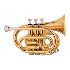 Мини труба Maxtone TT MINI 53L